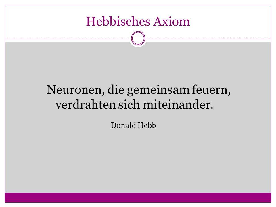 Hebbisches Axiom Neuronen, die gemeinsam feuern, verdrahten sich miteinander. Donald Hebb