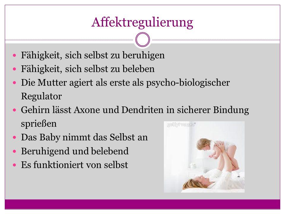 Affektregulierung Fähigkeit, sich selbst zu beruhigen Fähigkeit, sich selbst zu beleben Die Mutter agiert als erste als psycho-biologischer Regulator Gehirn lässt Axone und Dendriten in sicherer Bindung sprießen Das Baby nimmt das Selbst an Beruhigend und belebend Es funktioniert von selbst