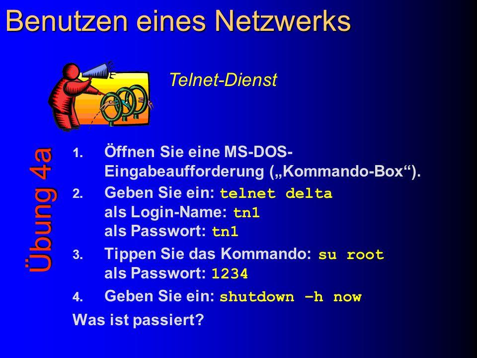 Benutzen eines Netzwerks 1. Öffnen Sie eine MS-DOS- Eingabeaufforderung (Kommando-Box). 2. Geben Sie ein: telnet delta als Login-Name: tn1 als Passwor