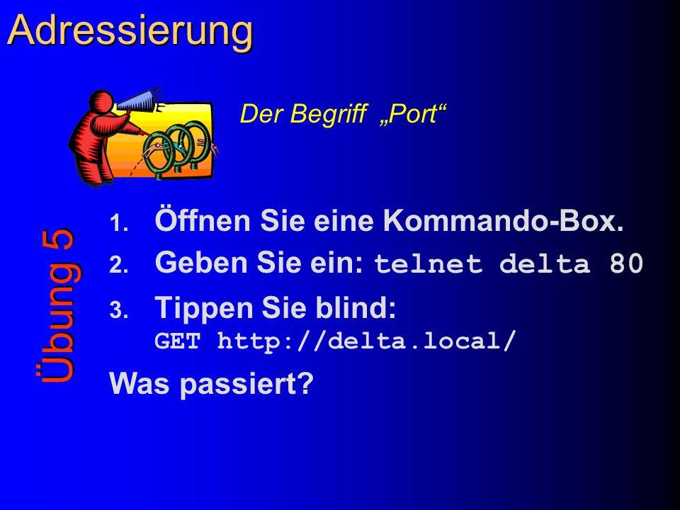 Adressierung 1. Öffnen Sie eine Kommando-Box. 2. Geben Sie ein: telnet delta 80 3. Tippen Sie blind: GET http://delta.local/ Was passiert? Übung 5 Der