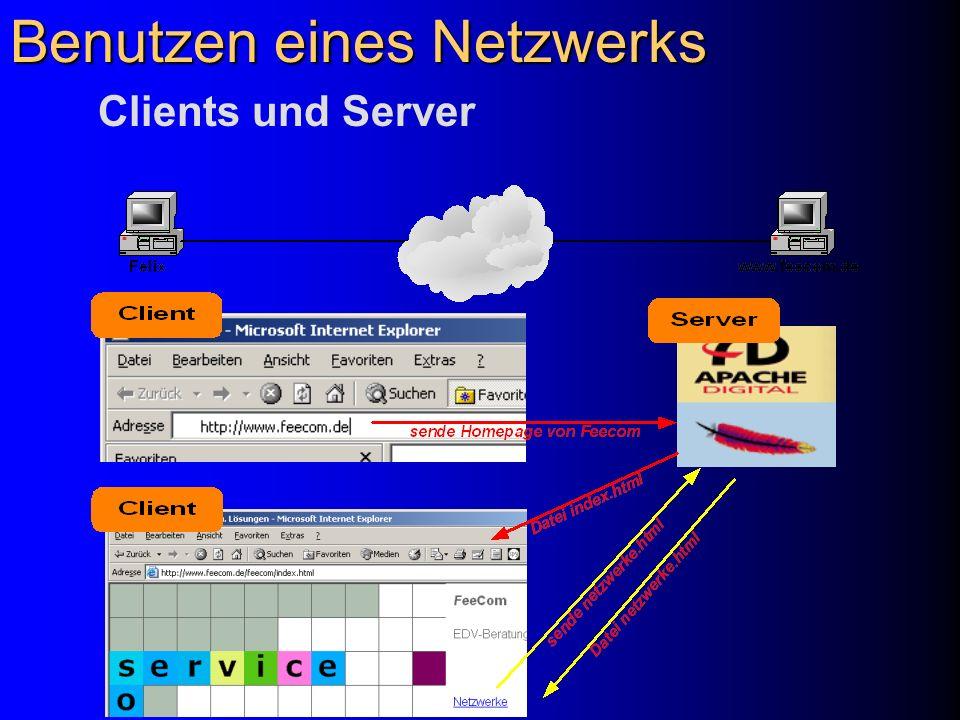 Benutzen eines Netzwerks 1.Starten Sie einen Web-Browser (Internet Explorer oder Netscape) 2.
