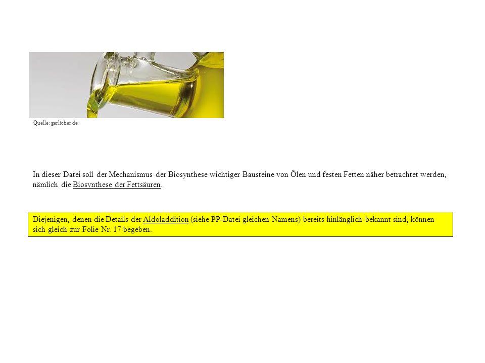 Quelle: gerlicher.de In dieser Datei soll der Mechanismus der Biosynthese wichtiger Bausteine von Ölen und festen Fetten näher betrachtet werden, näml