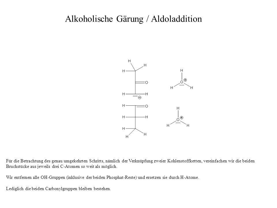 Für die Betrachtung des genau umgekehrten Schritts, nämlich der Verknüpfung zweier Kohlenstoffketten, vereinfachen wir die beiden Bruchstücke aus jewe