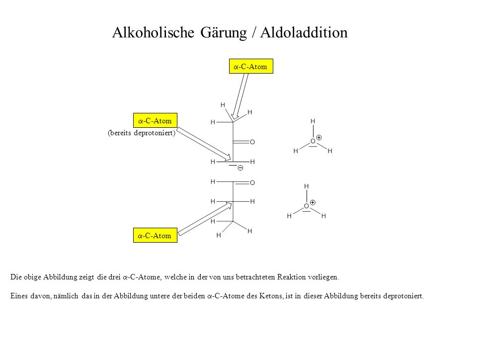 Die obige Abbildung zeigt die drei -C-Atome, welche in der von uns betrachteten Reaktion vorliegen. Eines davon, nämlich das in der Abbildung untere d