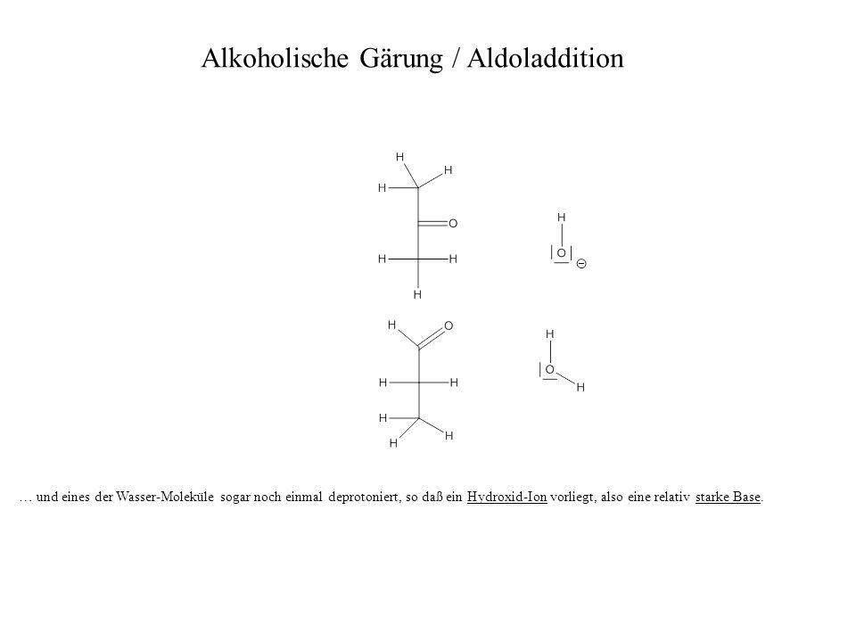 … und eines der Wasser-Moleküle sogar noch einmal deprotoniert, so daß ein Hydroxid-Ion vorliegt, also eine relativ starke Base. Alkoholische Gärung /
