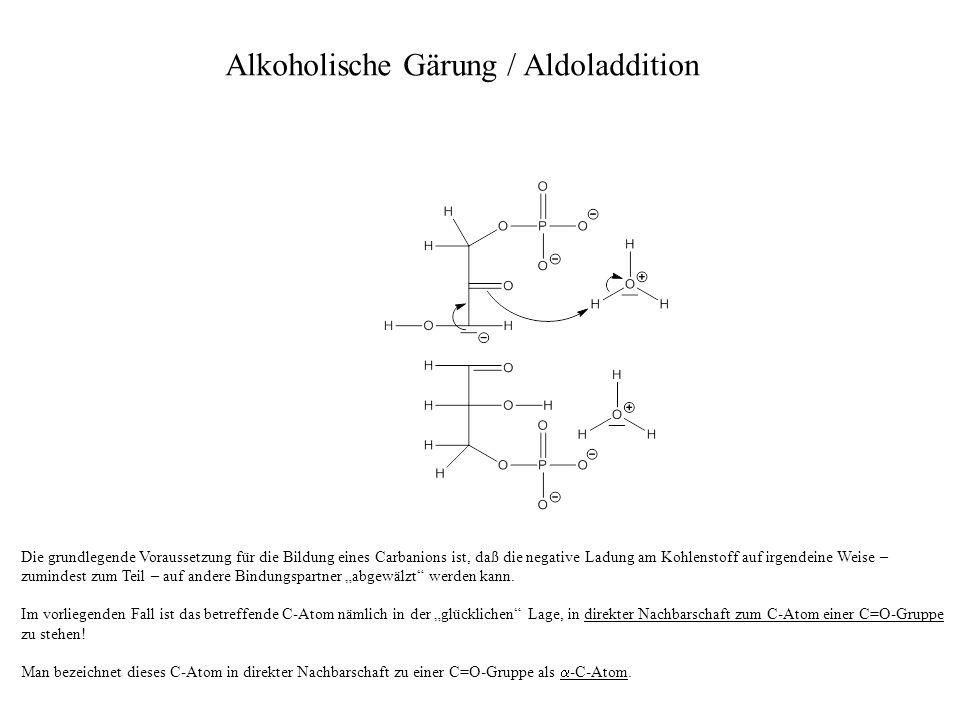 Zunächst bildet das oben abgebildete Molekül eine Endiol-Gruppe aus.