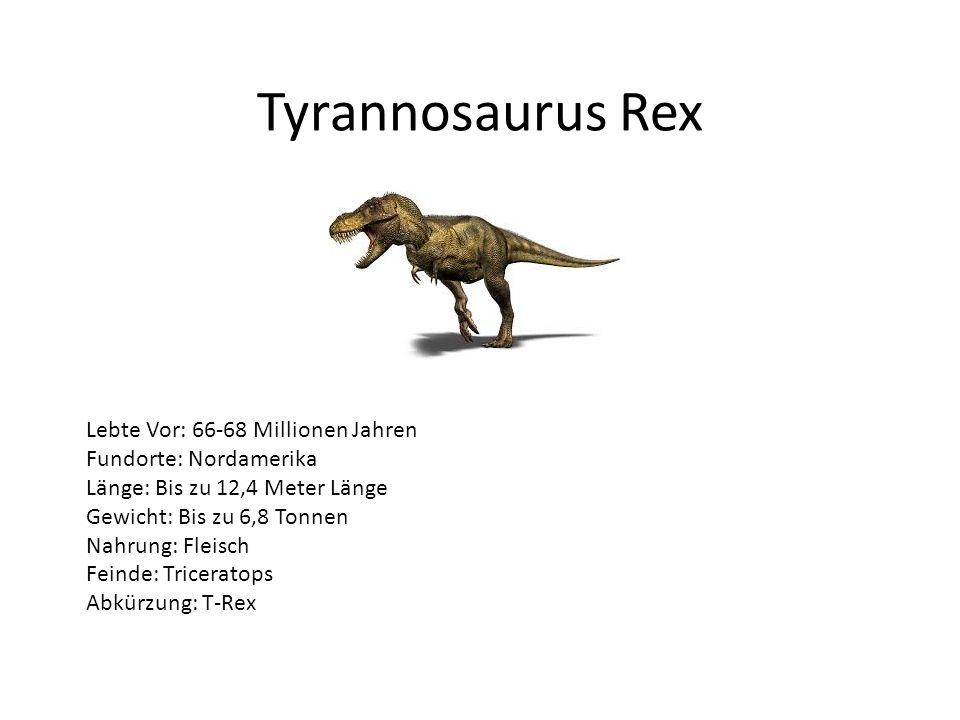 Tyrannosaurus Rex Lebte Vor: 66-68 Millionen Jahren Fundorte: Nordamerika Länge: Bis zu 12,4 Meter Länge Gewicht: Bis zu 6,8 Tonnen Nahrung: Fleisch F