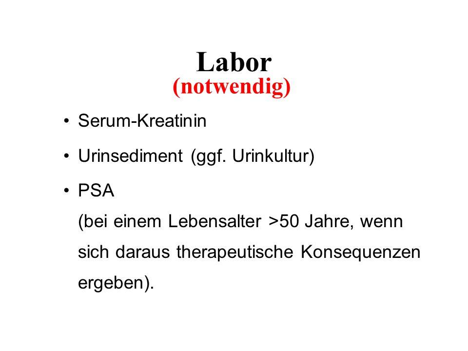 Labor Serum-Kreatinin Urinsediment (ggf.