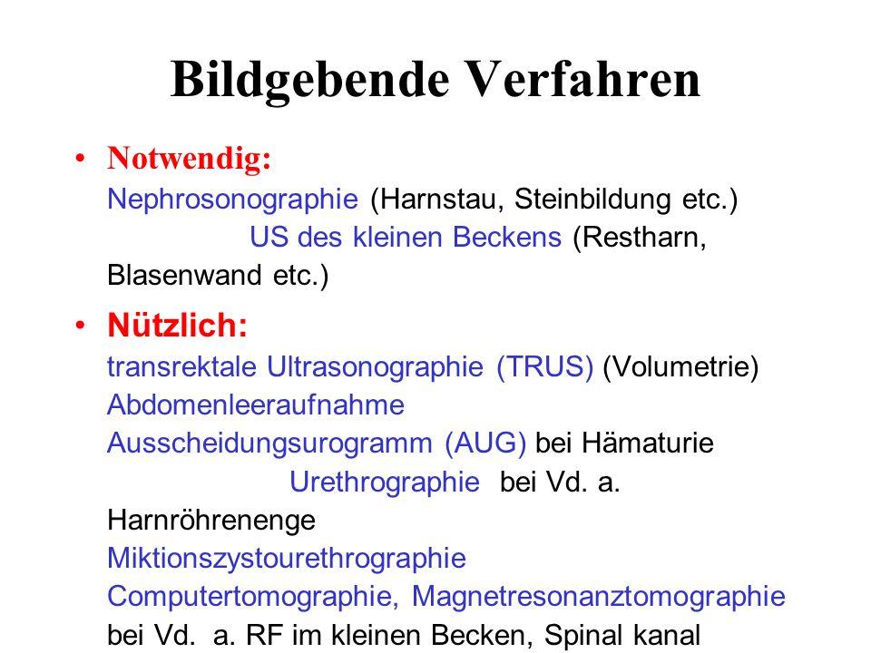 Bildgebende Verfahren Notwendig: Nephrosonographie (Harnstau, Steinbildung etc.) US des kleinen Beckens (Restharn, Blasenwand etc.) Nützlich: transrektale Ultrasonographie (TRUS) (Volumetrie) Abdomenleeraufnahme Ausscheidungsurogramm (AUG) bei Hämaturie Urethrographie bei Vd.