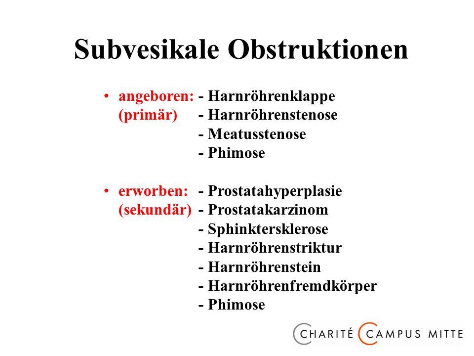 angeboren:- Harnröhrenklappe (primär)- Harnröhrenstenose - Meatusstenose - Phimose erworben:- Prostatahyperplasie (sekundär)- Prostatakarzinom - Sphinktersklerose - Harnröhrenstriktur - Harnröhrenstein - Harnröhrenfremdkörper - Phimose Subvesikale Obstruktionen
