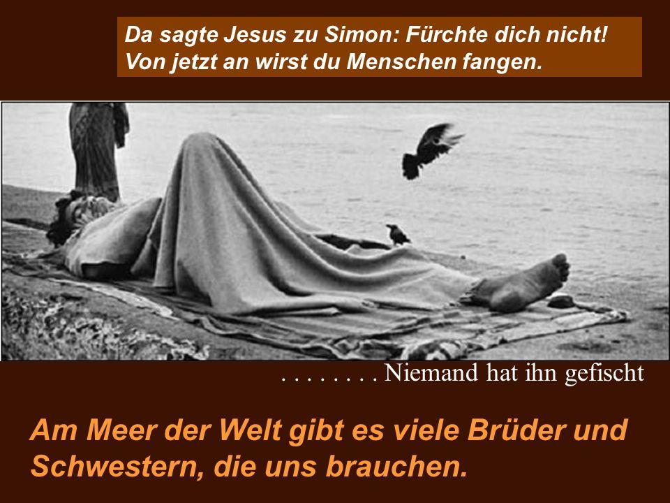 Da sagte Jesus zu Simon: Fürchte dich nicht! Von jetzt an wirst du Menschen fangen. Am Meer der Welt gibt es viele Brüder und Schwestern, die uns brau