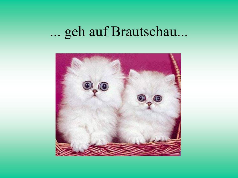 ... geh auf Brautschau...