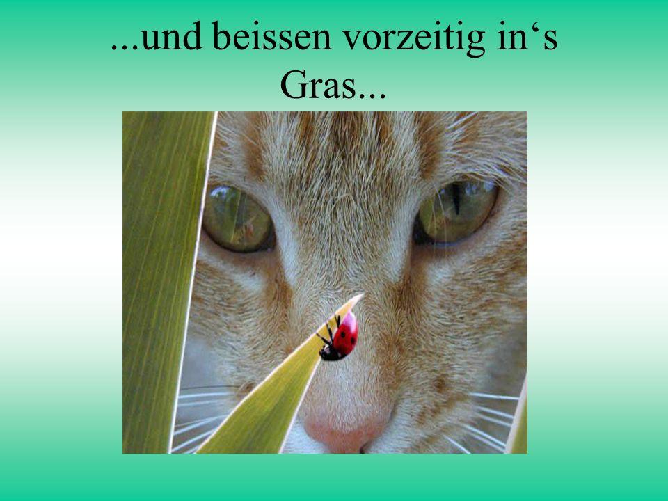 ...und beissen vorzeitig ins Gras...