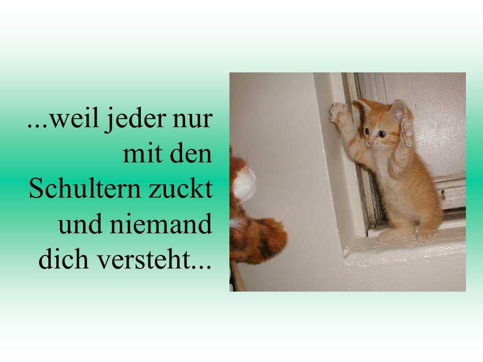 by Söne Tschüssss!