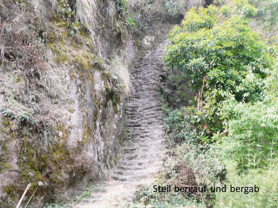 Steil bergauf und bergab