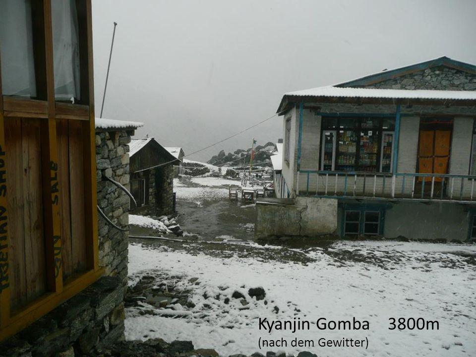 Kyanjin Gomba 3800m (nach dem Gewitter)