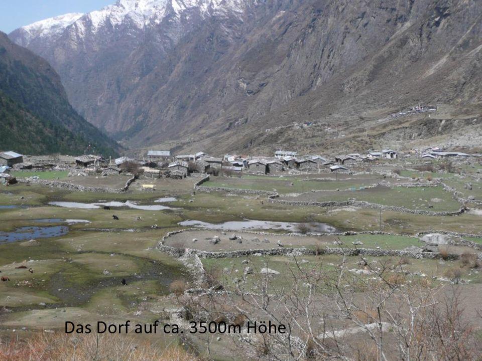 Das Dorf auf ca. 3500m Höhe