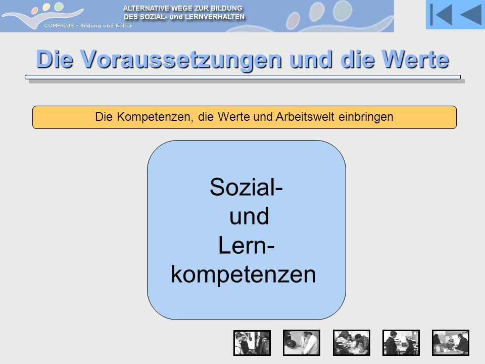 Die Voraussetzungen und die Werte Die Kompetenzen, die Werte und Arbeitswelt einbringen Sozial- und Lern- kompetenzen