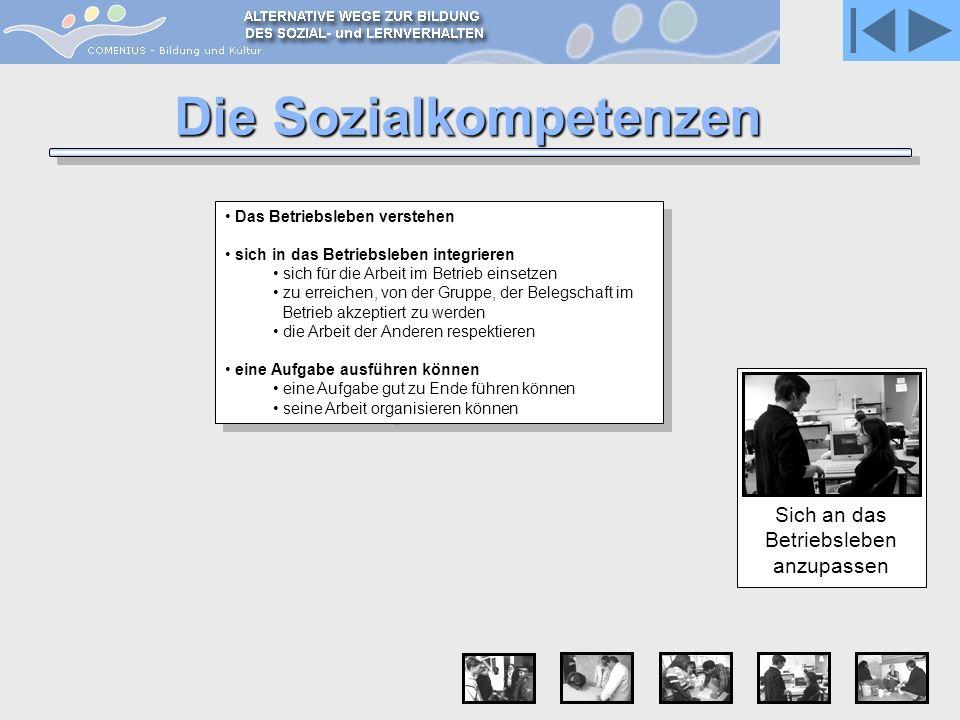 Die Sozialkompetenzen Sich an das Betriebsleben anzupassen Das Betriebsleben verstehen sich in das Betriebsleben integrieren sich für die Arbeit im Be