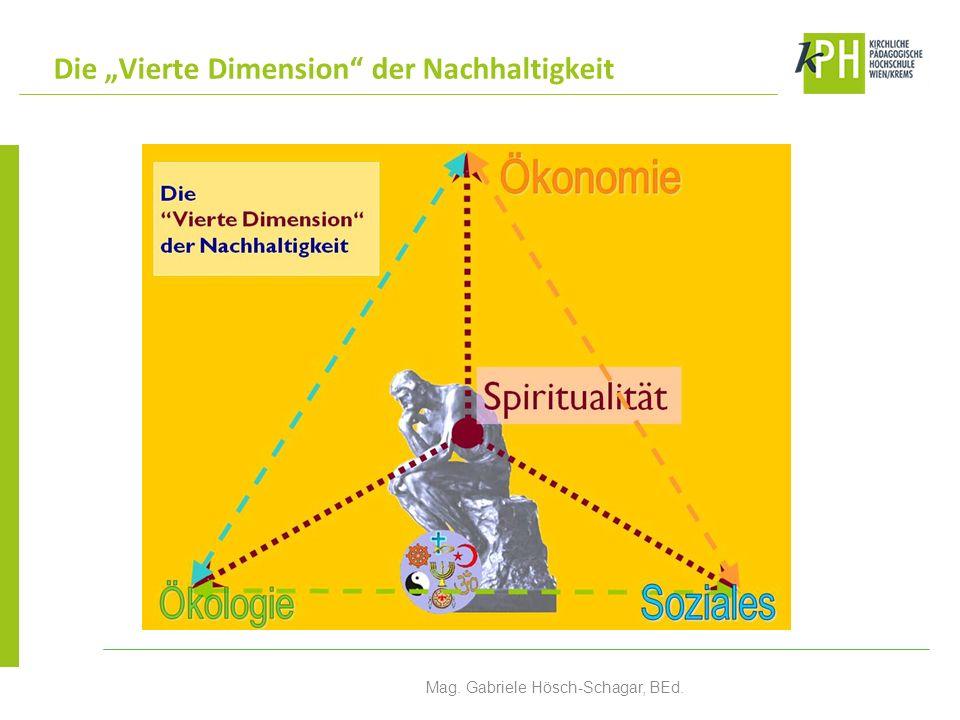 Gründung des Netzwerkes Nach der Durchführung der ersten Schulprojekte im Schuljahr 2002/2003 Ausgangspunkte Das Sozialwort des Ökumenischen Rates der Kirchen, wo ausführlich auf die Verantwortung für die Schöpfung eingegangen wird.