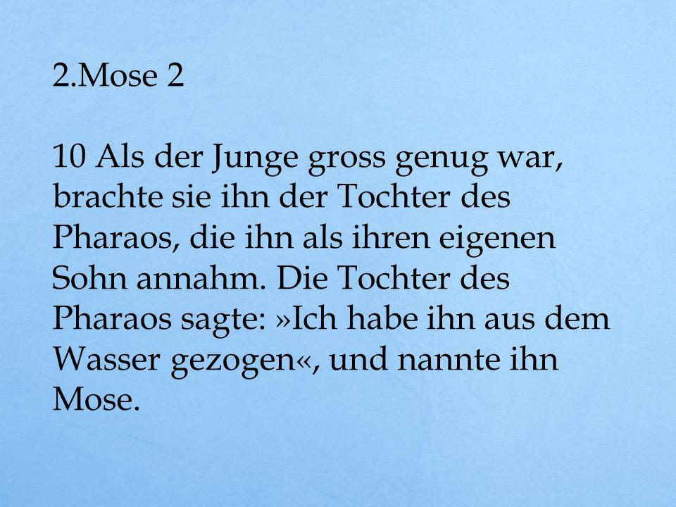 2.Mose 2 11 Als Mose erwachsen geworden war, ging er zu seinen Landsleuten und sah, wie hart sie arbeiten mussten.