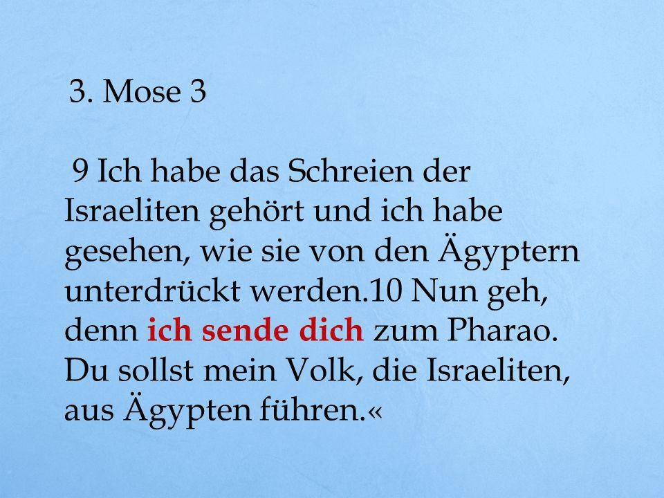 1. Not sehen 2. Berufung erkennen 2.Mose 2, 15 und 3. Mose 3, 9+10