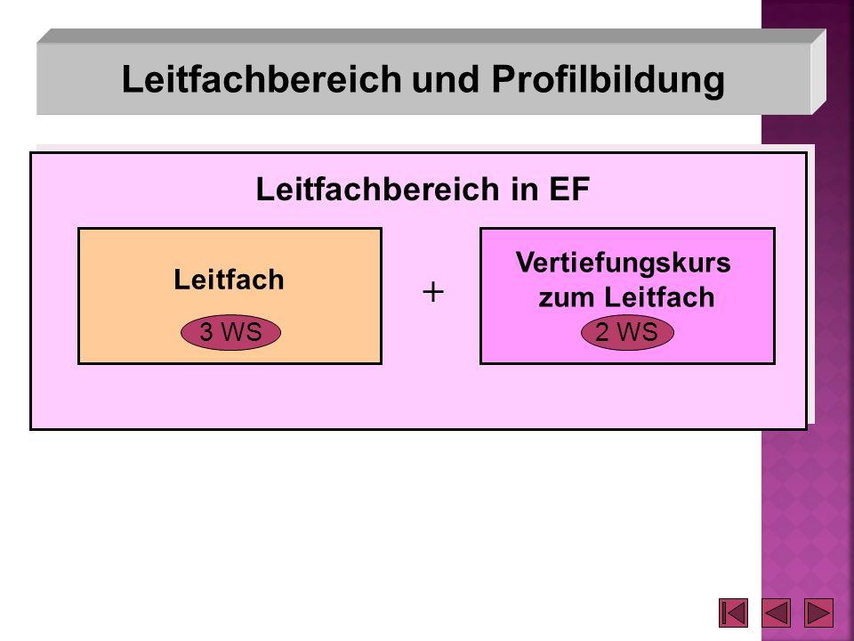 Leitfachbereich und Profilbildung Leitfach Vertiefungskurs zum Leitfach 3 WS2 WS + Leitfachbereich in EF