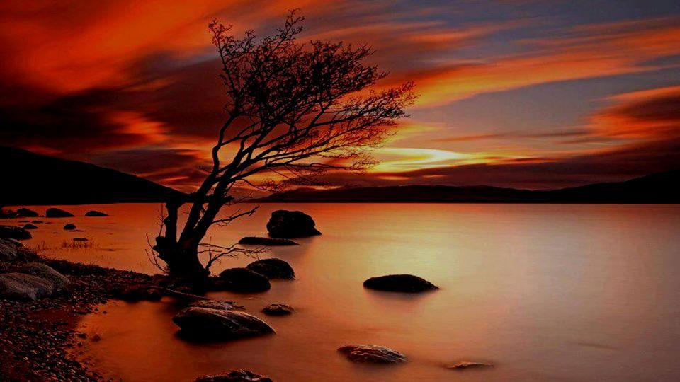 Leg deine Hände auf deine Brust und fühle dein Herz kraftvoll schlagen und zu dir sagen: Du lebst, du lebst, du lebst.