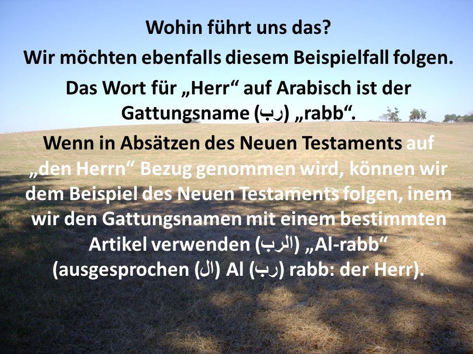 Wohin führt uns das? Wir möchten ebenfalls diesem Beispielfall folgen. Das Wort für Herr auf Arabisch ist der Gattungsname ( رب ) rabb. Wenn in Absätz
