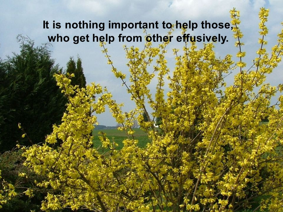 It is nothing important to help those, who get help from other effusively.