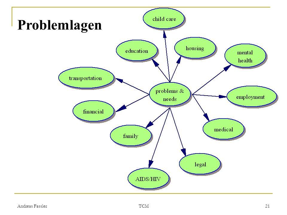 Andreas Fassler TCM 21 Problemlagen