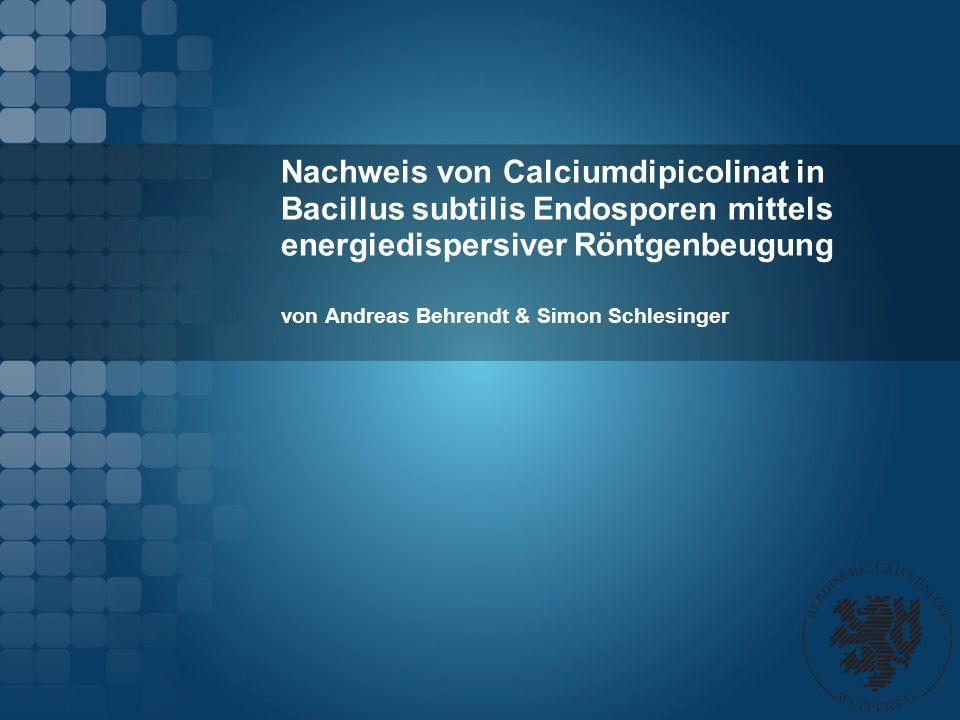 Nachweis von Calciumdipicolinat in Bacillus subtilis Endosporen mittels energiedispersiver Röntgenbeugung von Andreas Behrendt & Simon Schlesinger