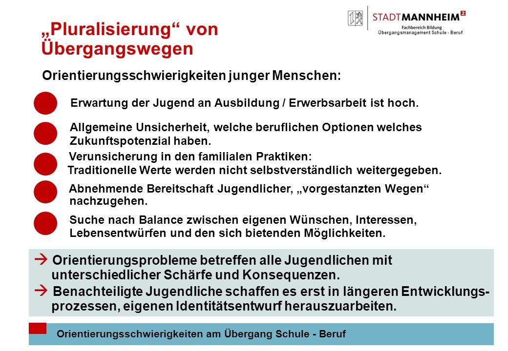 Übergangsmanagement Schule - Beruf 5 Pluralisierung von Übergangswegen Orientierungsschwierigkeiten am Übergang Schule - Beruf Orientierungsschwierigkeiten junger Menschen: Erwartung der Jugend an Ausbildung / Erwerbsarbeit ist hoch.