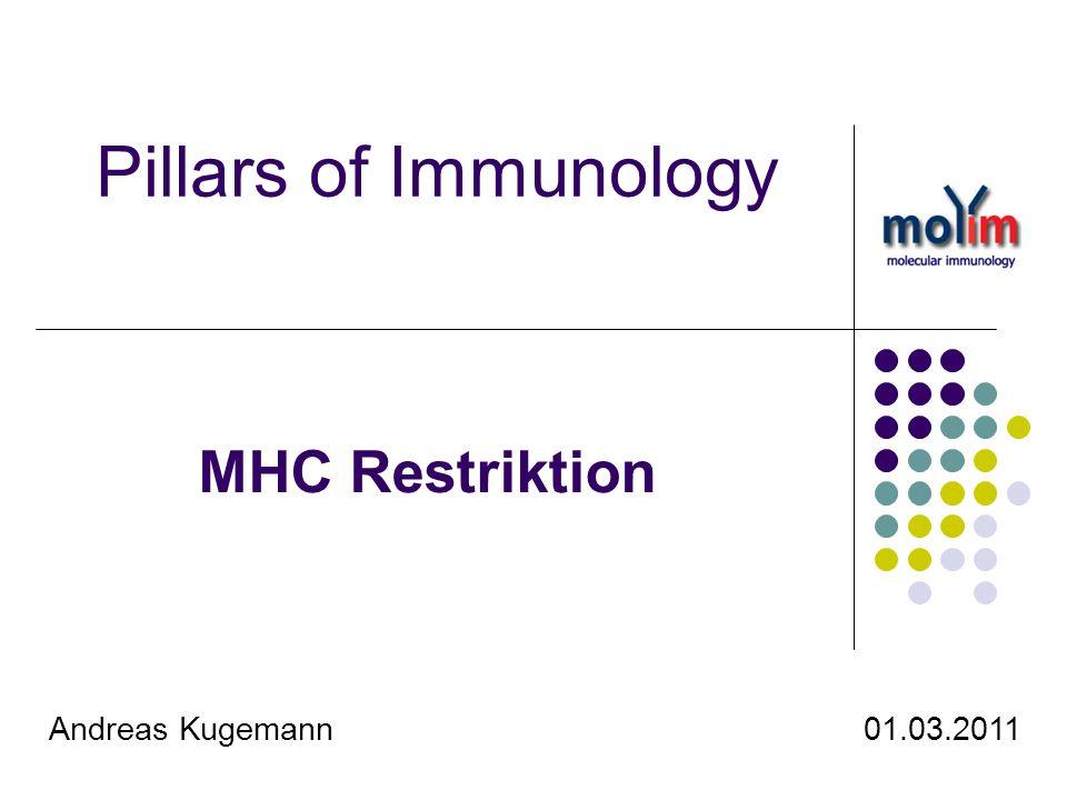 22 Heutiger Wissenstand Genprodukt von H2-Lokus ist MHC Virusinfektion führt zur Beladung und Expression von MHC I an Zelloberfläche Virus-spezifischer TCR bindet an beladenen MHC-I der Zielzelle MHC übernimmt Funktion der Selbst- und Fremderkennung