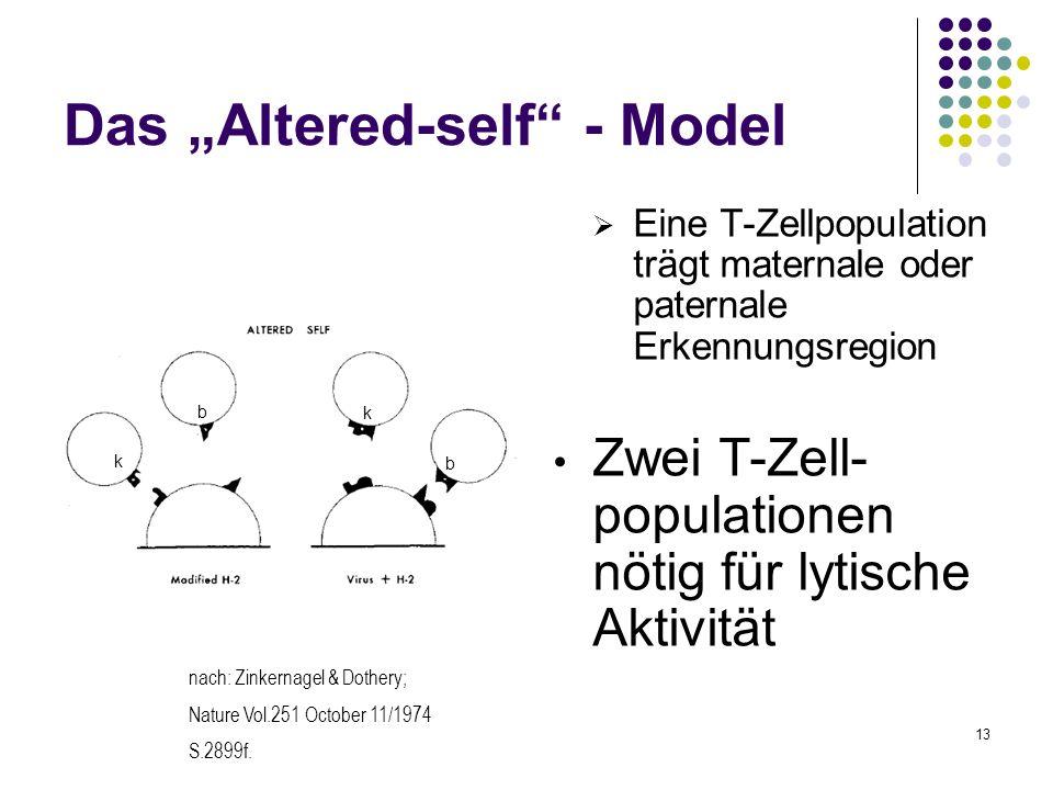 13 Das Altered-self - Model Eine T-Zellpopulation trägt maternale oder paternale Erkennungsregion Zwei T-Zell- populationen nötig für lytische Aktivit