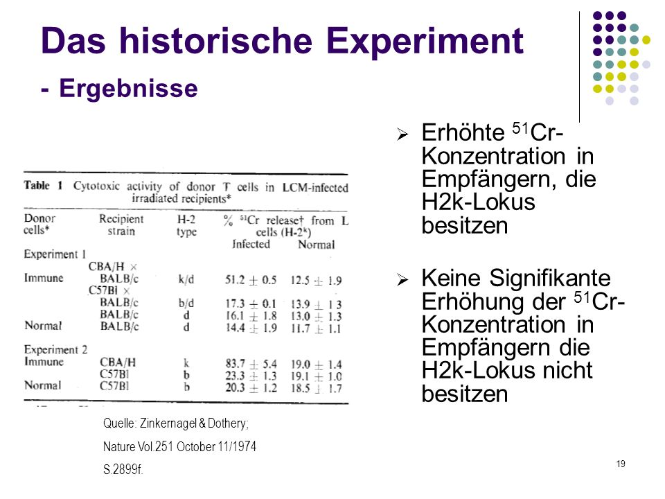 19 Das historische Experiment - Ergebnisse Erhöhte 51 Cr- Konzentration in Empfängern, die H2k-Lokus besitzen Keine Signifikante Erhöhung der 51 Cr- K