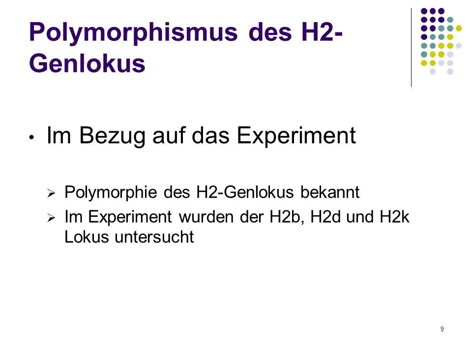 9 Polymorphismus des H2- Genlokus Im Bezug auf das Experiment Polymorphie des H2-Genlokus bekannt Im Experiment wurden der H2b, H2d und H2k Lokus unte