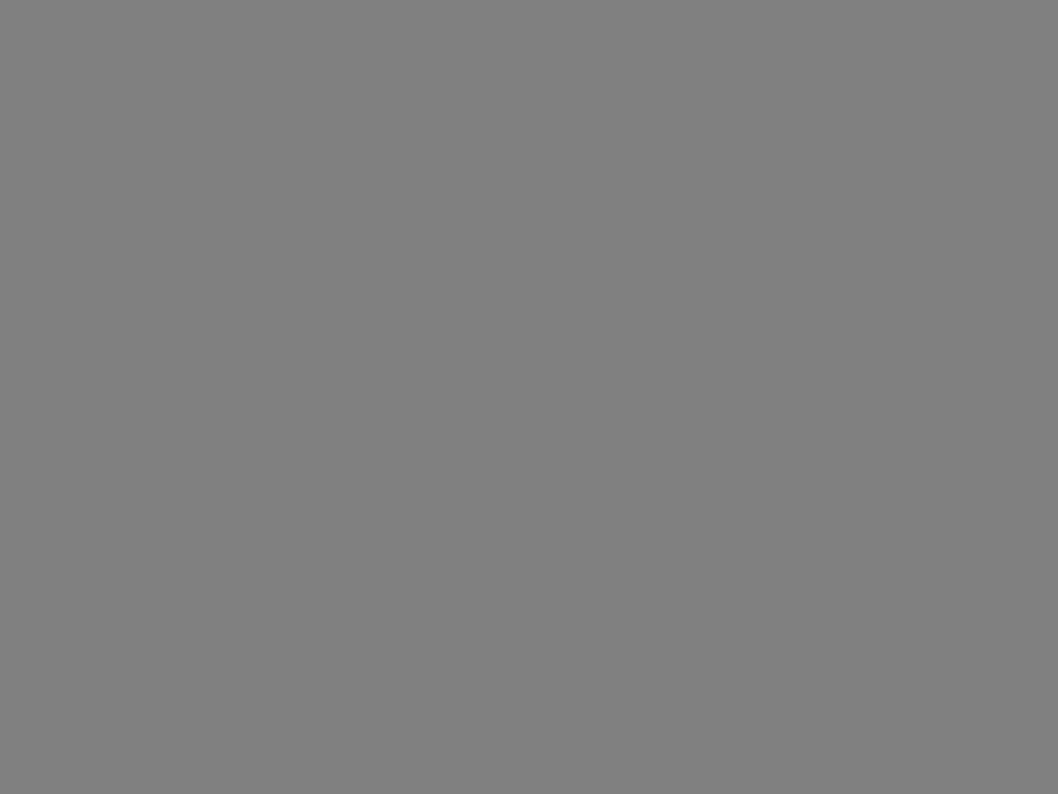 Chef AlarmSamariter Rapport Samariterverband beider Appenzell 17.05.2014© 2009 A.Weigele Heiden Übersicht beteiligter Organisationen Themen: Beteiligte Organisationen beim Schadenereignis