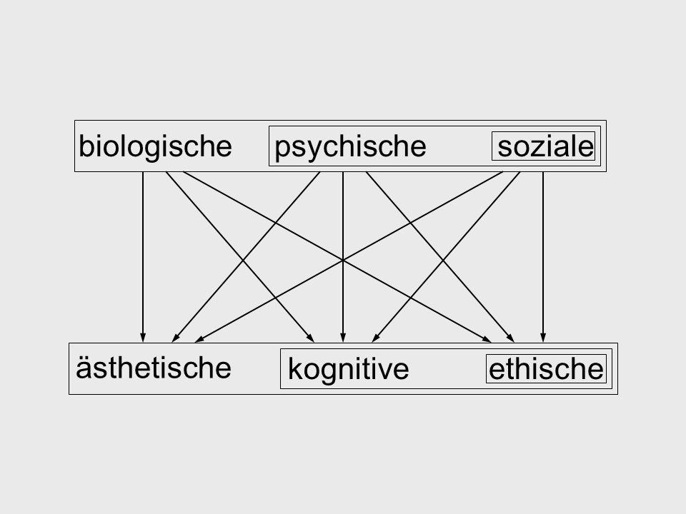 biologischepsychischesoziale ästhetische kognitiveethische