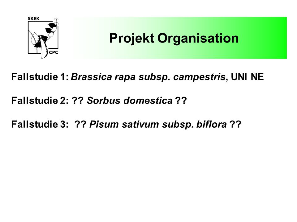 Projekt Organisation ad hoc Gruppe: Prof.Dr. Beat Keller, UNI ZH Dr.
