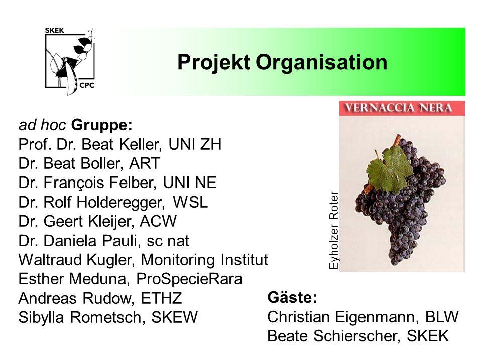 Projekt Organisation ad hoc Gruppe: Prof. Dr. Beat Keller, UNI ZH Dr. Beat Boller, ART Dr. François Felber, UNI NE Dr. Rolf Holderegger, WSL Dr. Geert