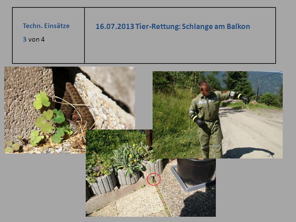 Techn. Einsätze 3 von 4 16.07.2013 Tier-Rettung: Schlange am Balkon