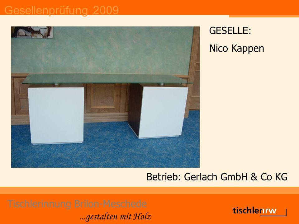 Gesellenprüfung 2009 Tischlerinnung Brilon-Meschede...gestalten mit Holz Betrieb: Gerlach GmbH & Co KG GESELLE: Nico Kappen