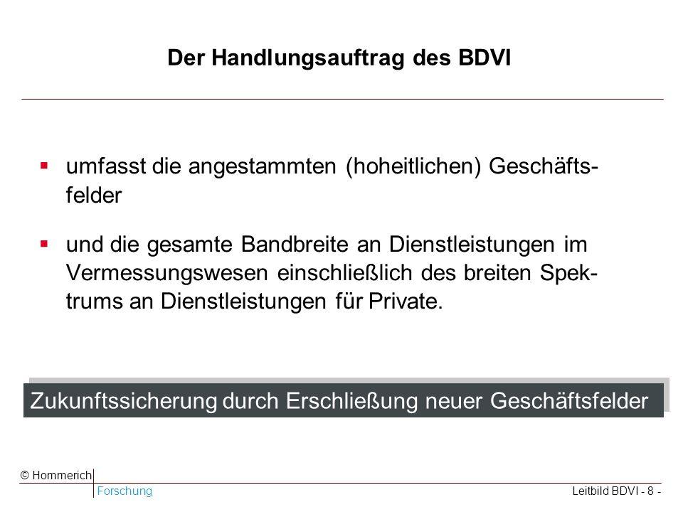 ForschungLeitbild BDVI - 8 - © Hommerich Der Handlungsauftrag des BDVI umfasst die angestammten (hoheitlichen) Geschäfts- felder und die gesamte Bandbreite an Dienstleistungen im Vermessungswesen einschließlich des breiten Spek- trums an Dienstleistungen für Private.