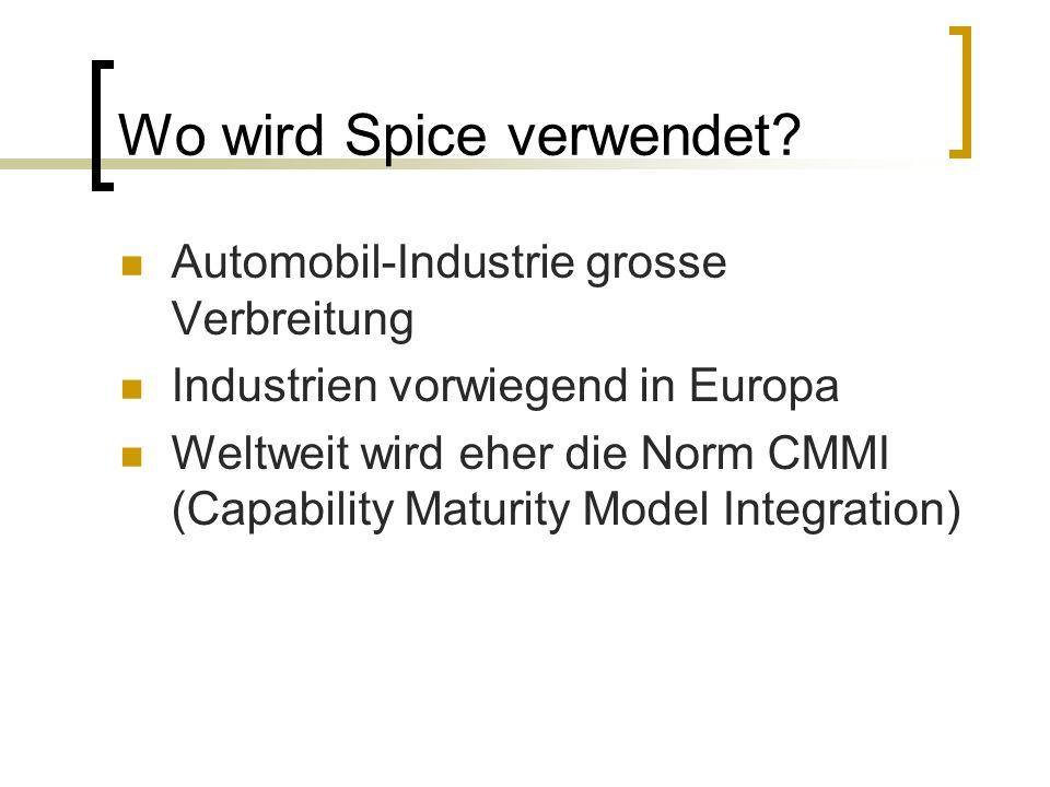 Spice verstehen Reifegrad