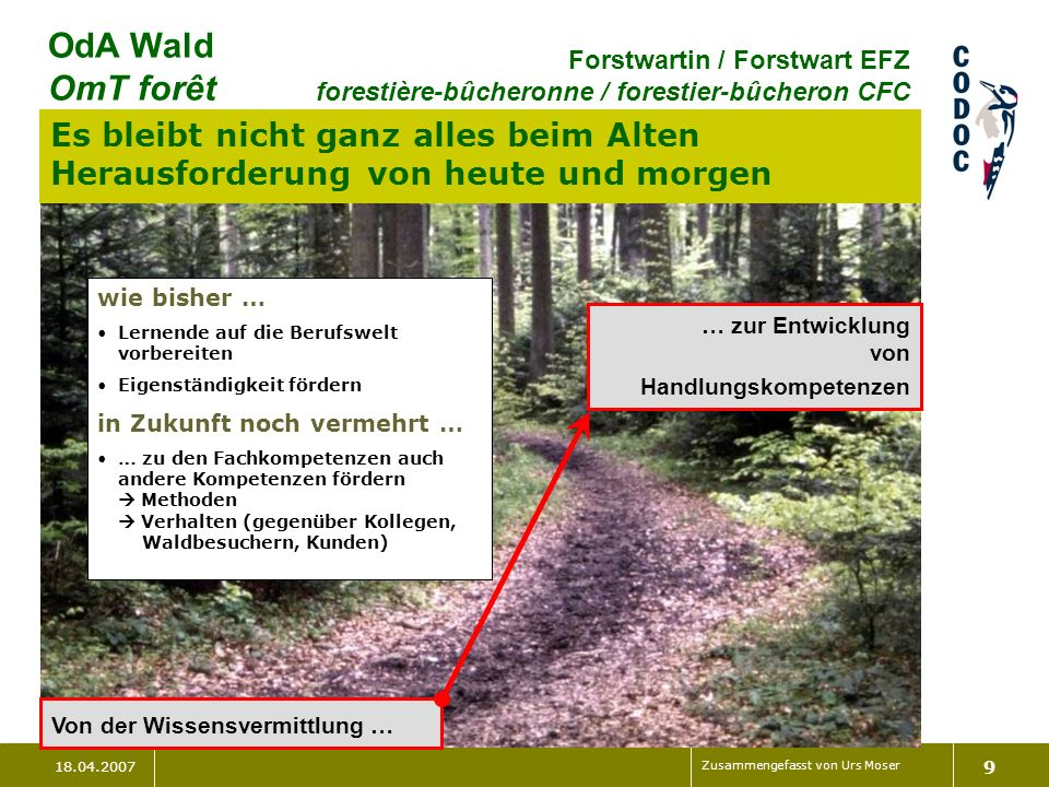 18.04.2007 Zusammengefasst von Urs Moser 9 OdA Wald OmT forêt Forstwartin / Forstwart EFZ forestière-bûcheronne / forestier-bûcheron CFC Es bleibt nic