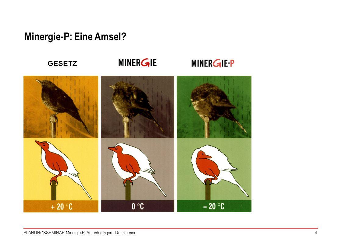 PLANUNGSSEMINAR Minergie-P: Anforderungen, Definitionen4 GESETZ Minergie-P: Eine Amsel?