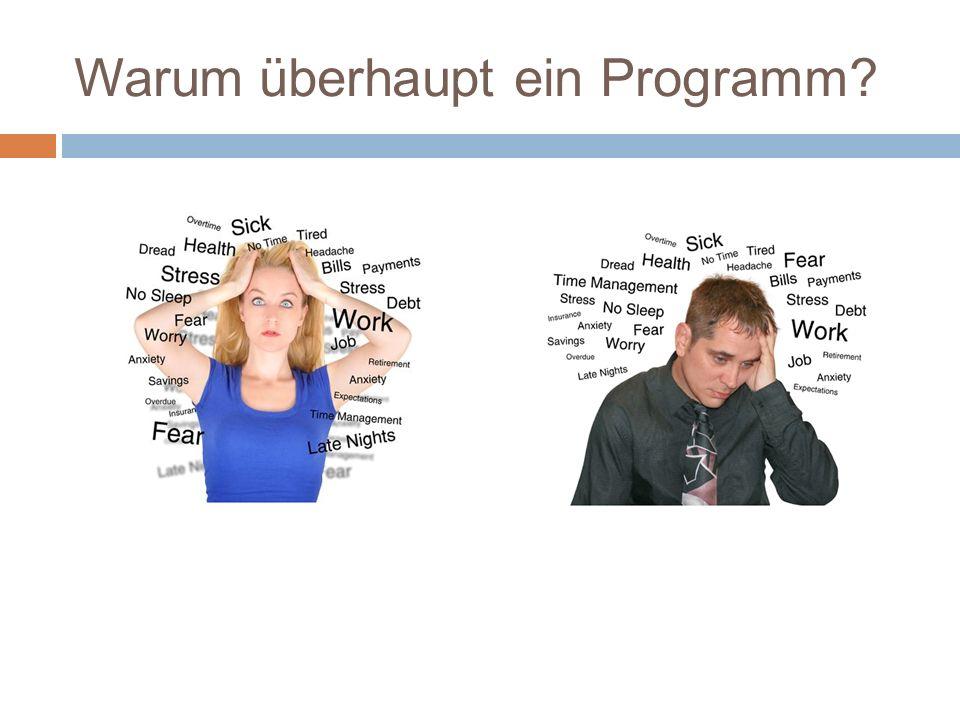 Warum überhaupt ein Programm?