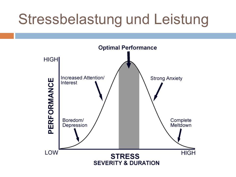 Stressbelastung und Leistung