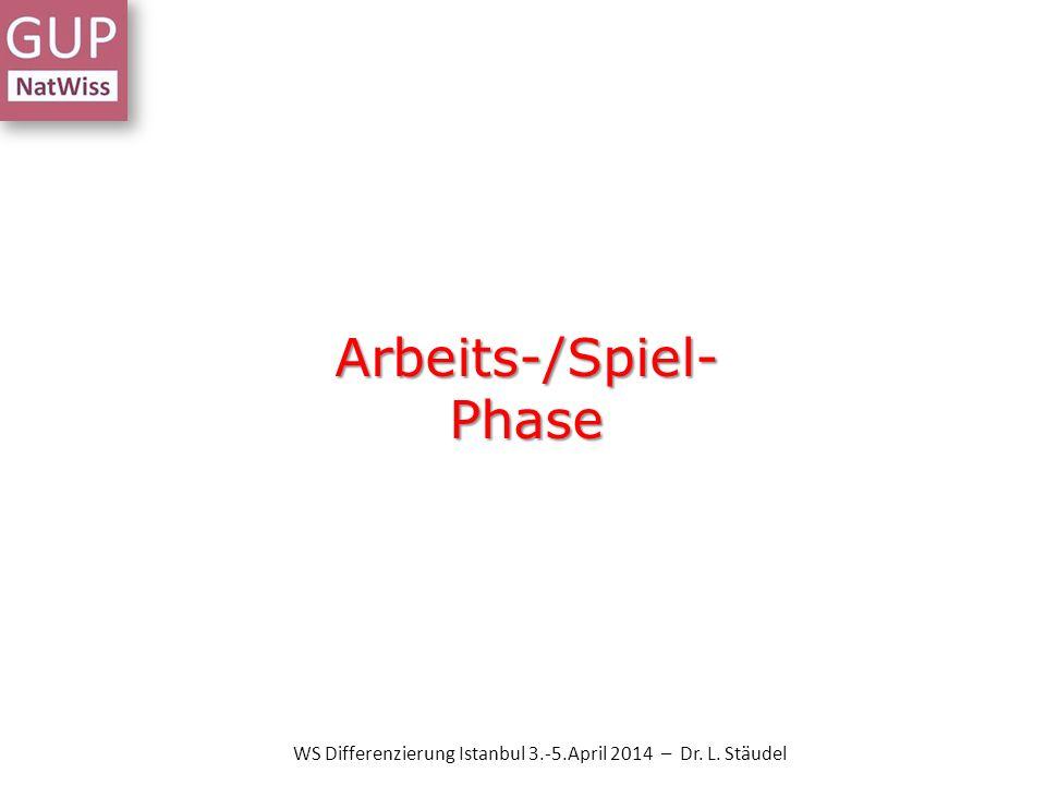 Arbeits-/Spiel- Phase WS Differenzierung Istanbul 3.-5.April 2014 – Dr. L. Stäudel